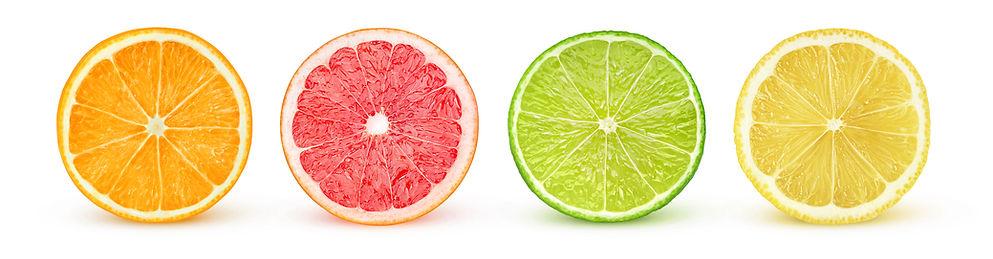 Row of citrus.jpg