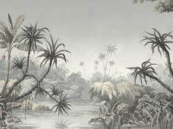 Tropical Views Paul Montgomery