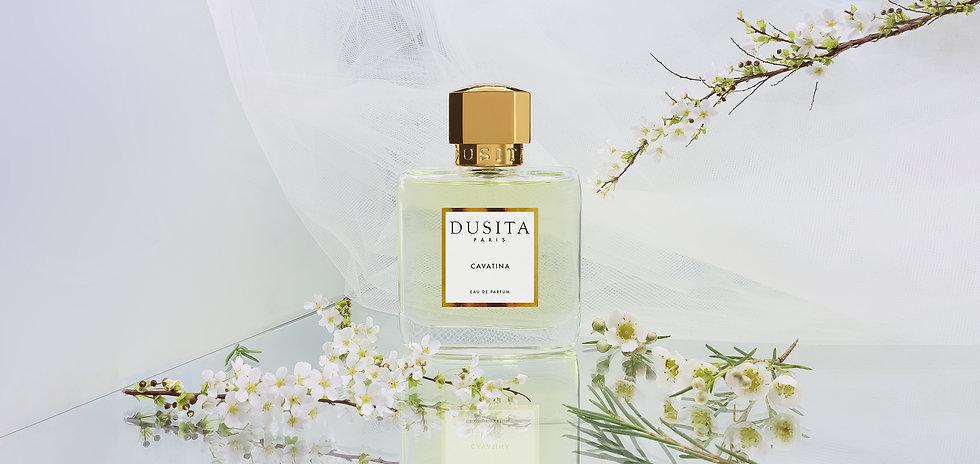 Cavatina - DUSITA