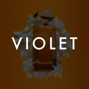 MV Logo 2.jpg