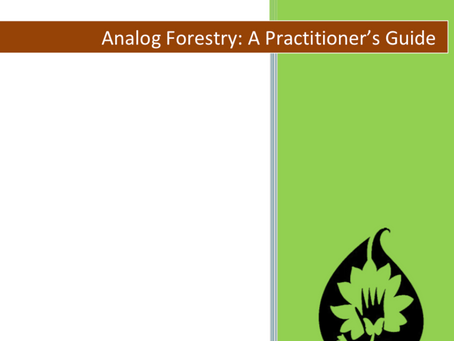 Analog Forestry is taught in Sinhalese (and soon in Tamil)