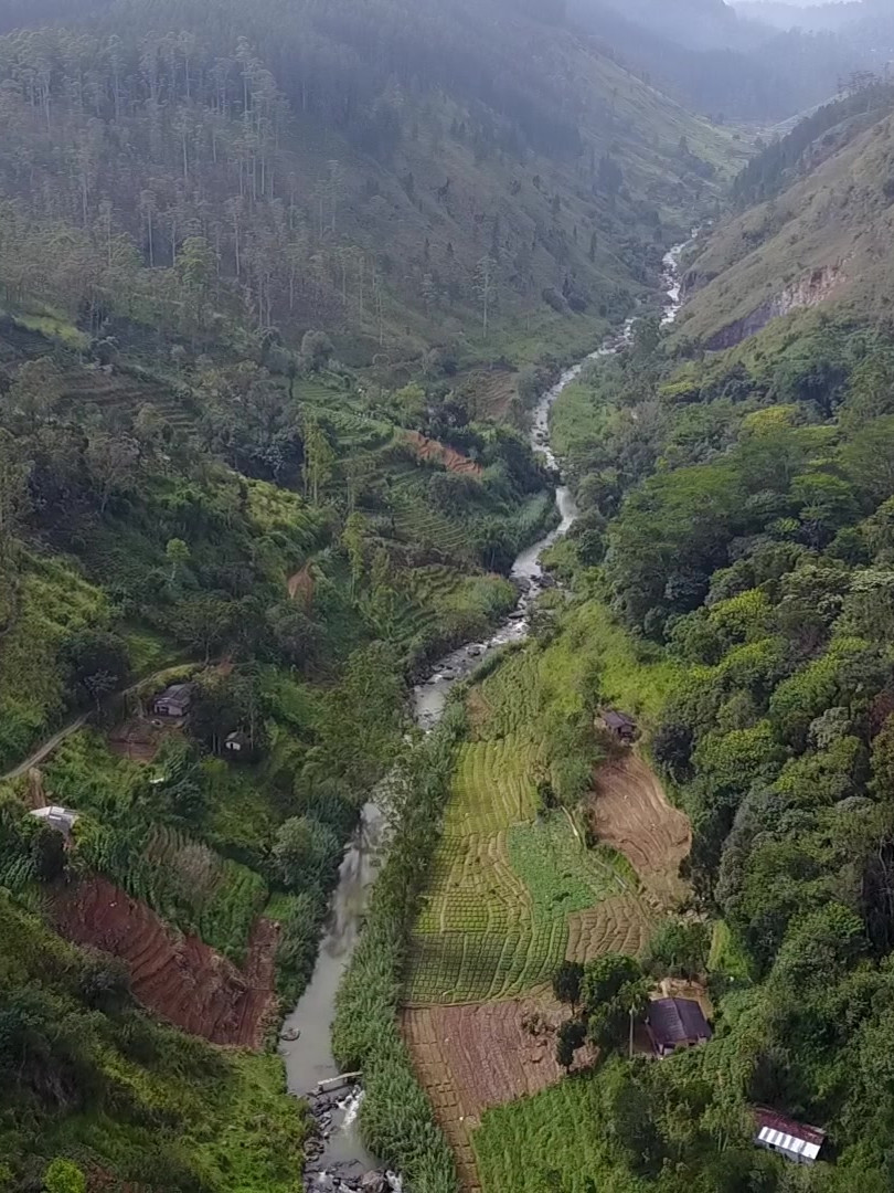 Belipola River Valley - Upstream View