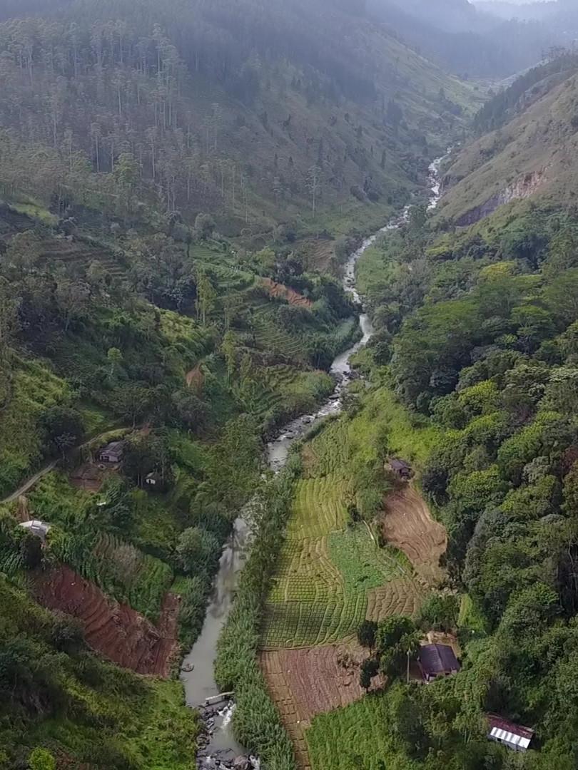Belipola River Valley - Upstream View