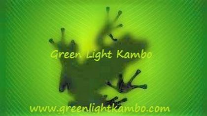 Kambo-Frog 2.jpg