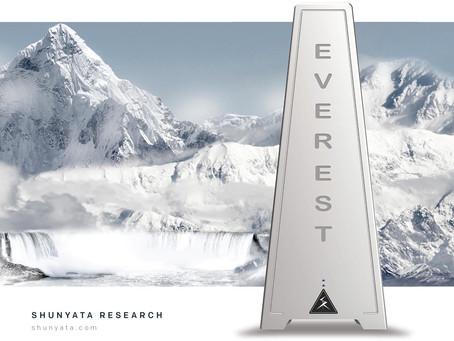Shunyata Research Everest 8000 Power Conditioner