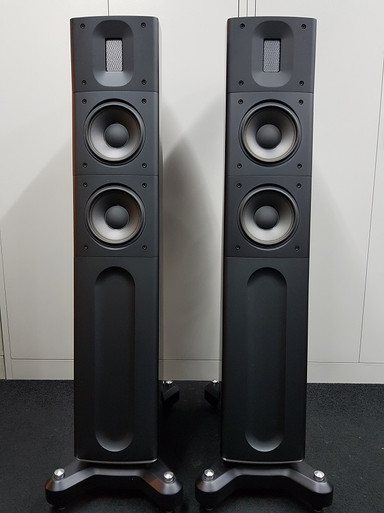 raidho-d21-black-1jpg