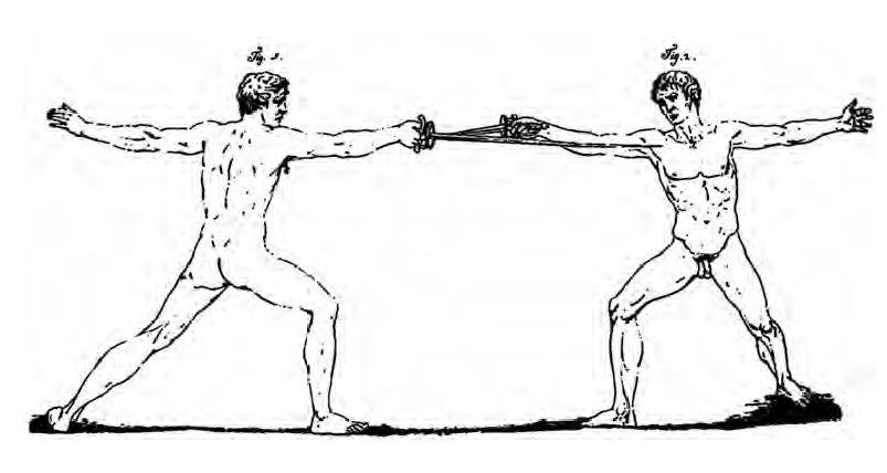 Zeichnung einer Inquartata nach Rosaroll Scorza & Grisetti.
