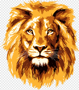 png-clipart-lionhead-rabbit-lion-face-ma