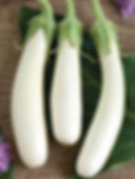 Eggplant, white and purple
