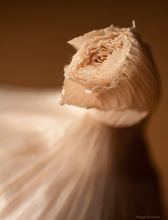 Garlic Top