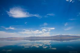 Walker Lake Reflection