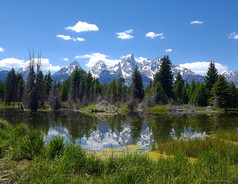 Tetons and a Beaver Pond