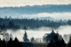 Tualatin Valley Fog