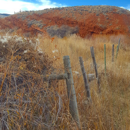 Fence In Red Ranyon