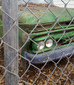 The Story Behind the Photos: The Short Tale of The Green Machine and Our Lady of Rust.