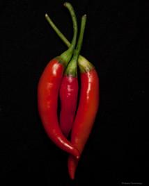 Chili Pepper Love