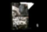 Dangerock_02_-_físico.png