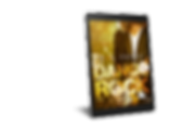 Dangerock 03 - ebook.png