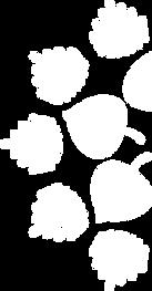 PurpleAspen_logo_icon_half_White.png