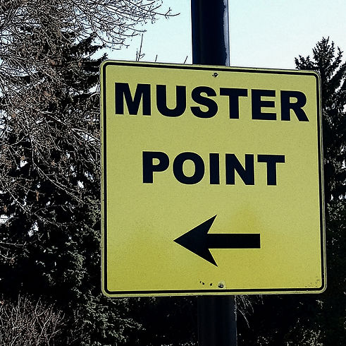 musterpoint.jpg