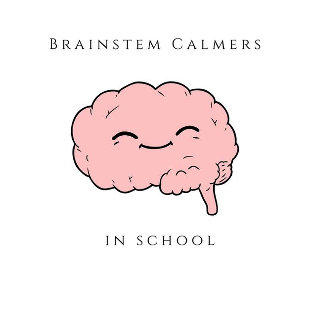 Brainstem Calmers in School