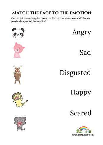 Match the face to the emotion (2).png