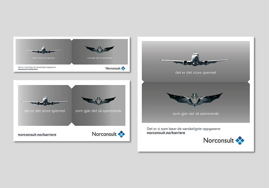 Norc_910x6366.jpg
