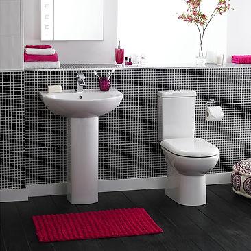 vanity and toilet.jpg