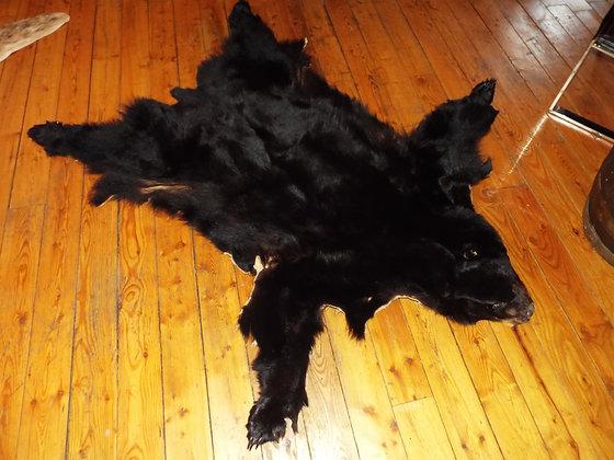 4627 Superbe peau d'ours avec griffes