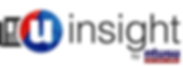 u-insight logo.png