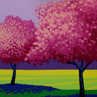"""Cherry Blossom Duet - 20"""" X 20"""" - John Nolan"""