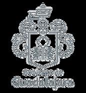 373-3731678_gobierno-guadalajara-logo-go