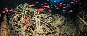 thistlegorm mar rojo.jpg