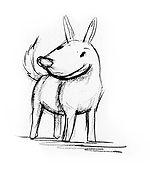 E. perracos 2.jpg