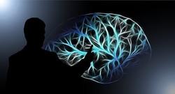 rtms-less-more-neurosciencenews-public
