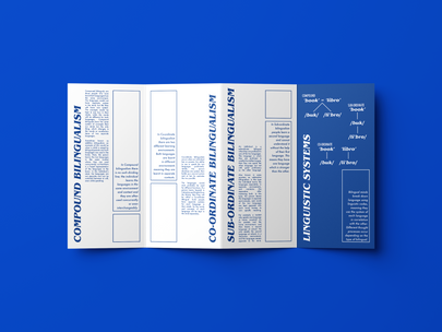 bilingual guide 1.png