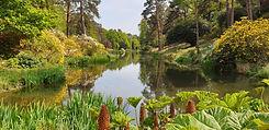 Leonardslee garden.jpg