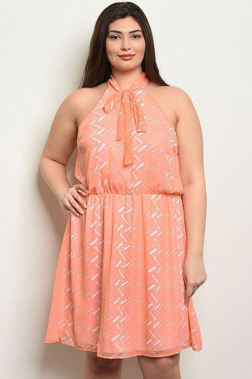Coral Ivory Plus Size Dress