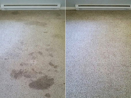 Best Carpet Cleaning Service!