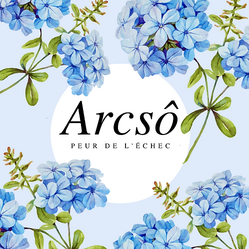 ARCSÔ - PEUR DE L'ÉCHEC