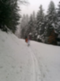 Montagne 4.jpg