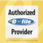 E-File2.png