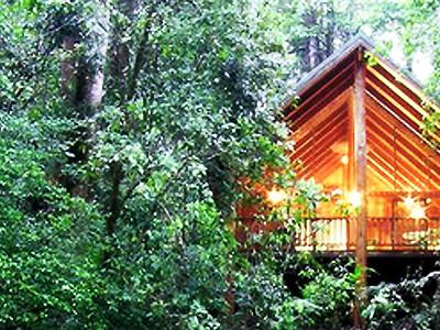 Passer ses vacances à Cairns, voyager et visiter Cairns