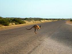 Géographie Australie