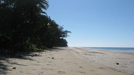Coconut Beach, Daintree National Park, Australie