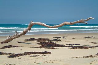 Quel tour pour deux semaines de voyage en Australie en février ?