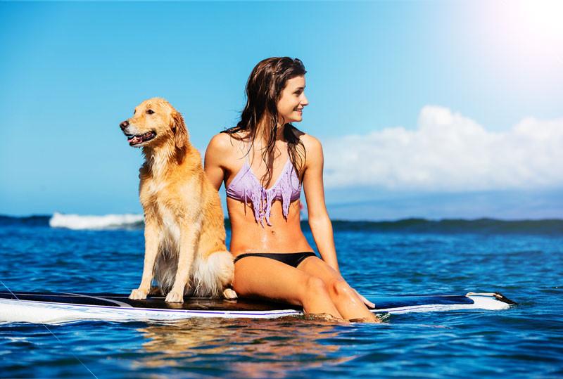 Voyager en Australie avec son chien ou son chat