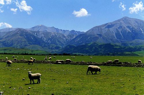 voyager en Nouvelle Zélande, partir en voyage en NZ