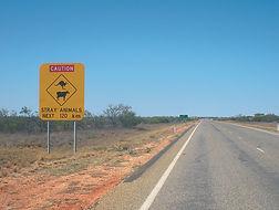 Tout savoir pour partir en Australie en Working Holiday Visa (WHV)