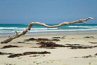 Point Picks, Victoria, Australie